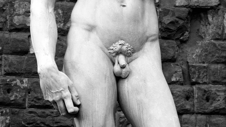 Detail of the Michelangelo's statue of David