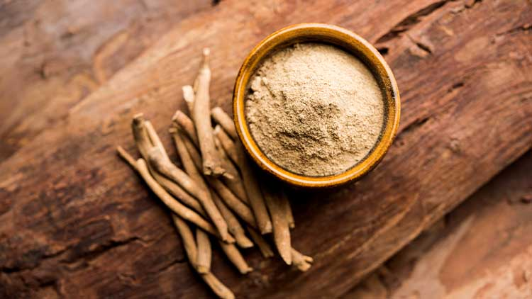 Ashwagandha / Aswaganda OR Indian Ginseng is an Ayurveda medicine in stem and powder form. Isolated on plain background