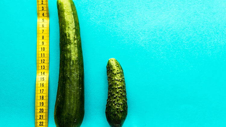 large and small cucumber on a blue background is a rowan with a yellow ruler. concept of a small penis. concept of a large penis